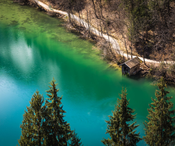 Natural green - Klamsee, Austria